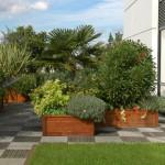 terrasse jardin suspendu 2