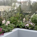 terrasse jardin suspendu 3