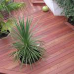terrasse bois devis 1