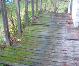 terrasse bois mousse 1
