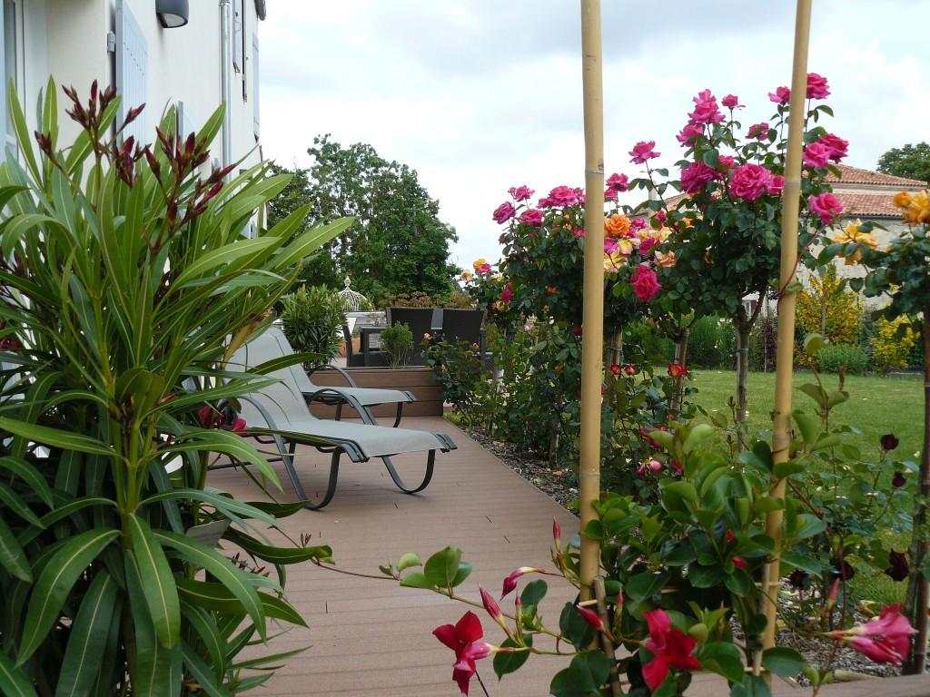 terrasse fleurie hiver 1