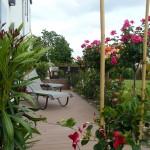 terrasse-fleurie-hiver-1