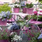 terrasse-fleurie-hiver-3