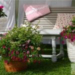 terrasse-fleurie-hiver-4