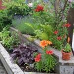 terrasse-fleurie-hiver-5